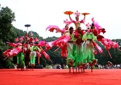 2013年南京国际梅花节演出照片