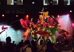 2014年非州塞舌尔嘉年华开幕式表演